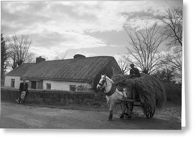 Horse And Cart Greeting Cards - Bringing Home Fodder Tipperary 1957 Greeting Card by Irish Photo Archive