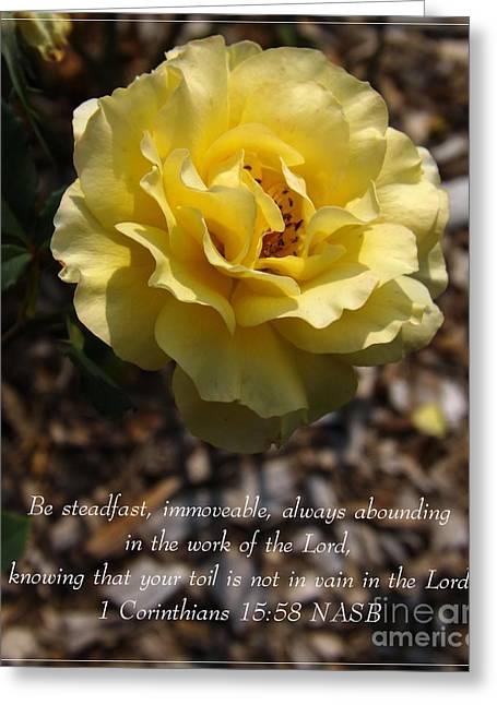Bible Greeting Cards - Brite Lites Rose Greeting Card by Sara  Raber