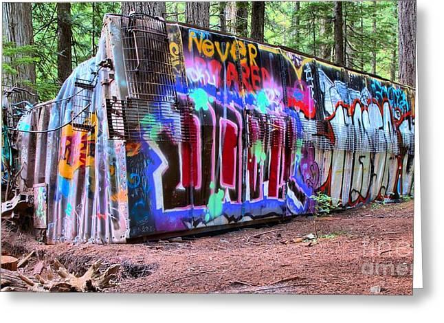 Sea To Sky Highway Greeting Cards - British Columbia Box Car Graffiti Greeting Card by Adam Jewell
