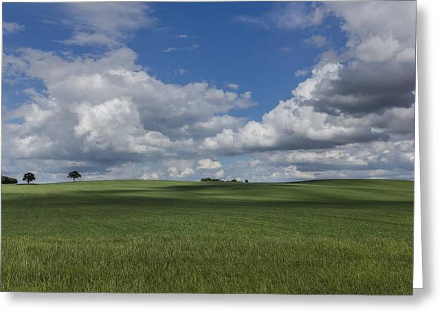Agricultural Greeting Cards - British Farmland Greeting Card by Chris Fletcher