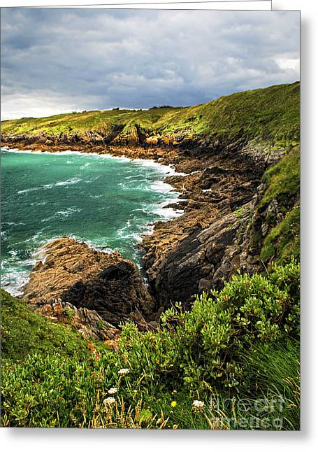 Ocean Landscape Greeting Cards - Brittany coast Greeting Card by Elena Elisseeva