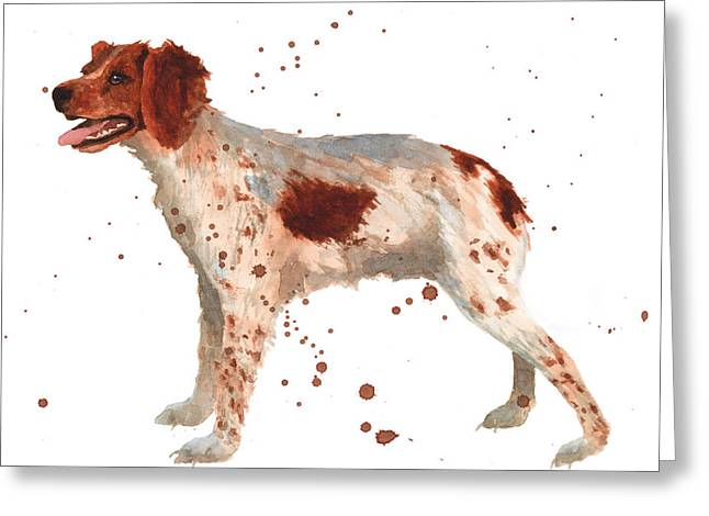 Brittany Greeting Cards - Brittany Spaniel Greeting Card by Alison Fennell