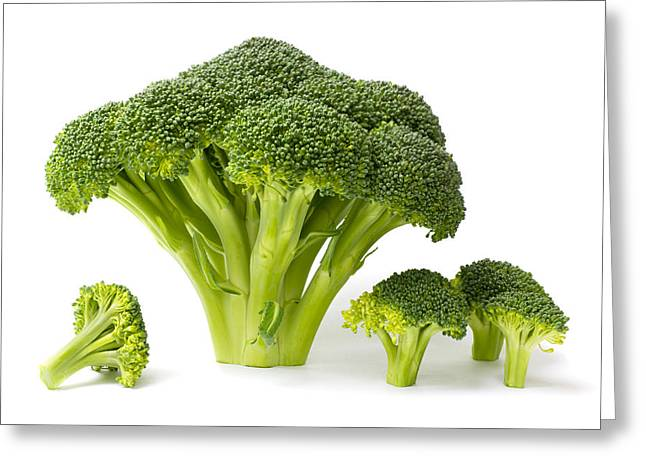 Broccoli Greeting Cards - Broccoli Isolated on White Greeting Card by Donald  Erickson