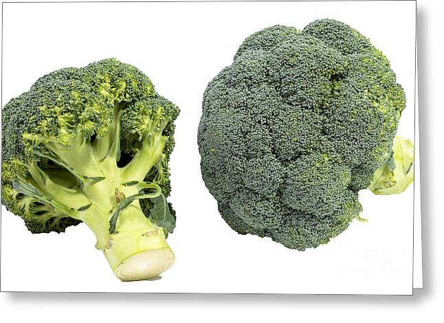 Broccoli Photographs Greeting Cards - Broccoli Greeting Card by Patricia Hofmeester