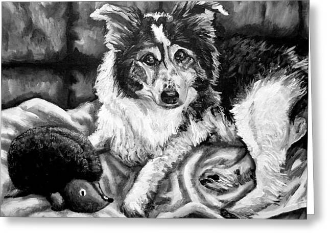 Stuffy Greeting Cards - Brody in Black and White Greeting Card by Shana Rowe