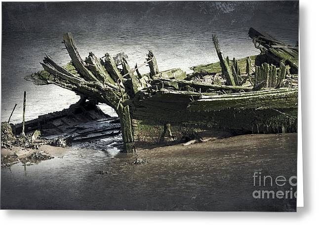 Broken And Forgotten  Greeting Card by Svetlana Sewell
