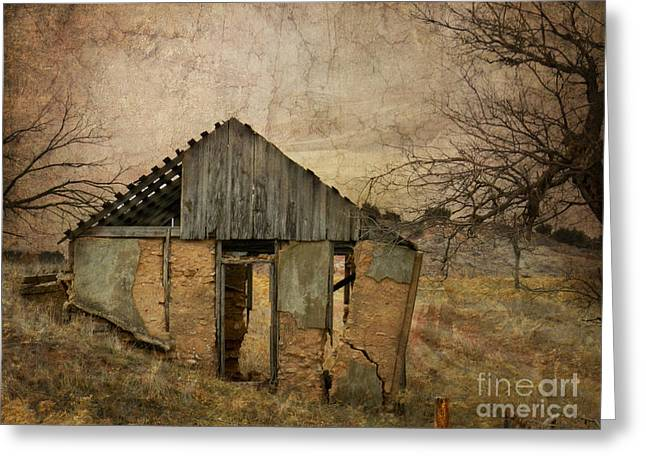 Outbuilding Greeting Cards - Broken Greeting Card by Betty LaRue