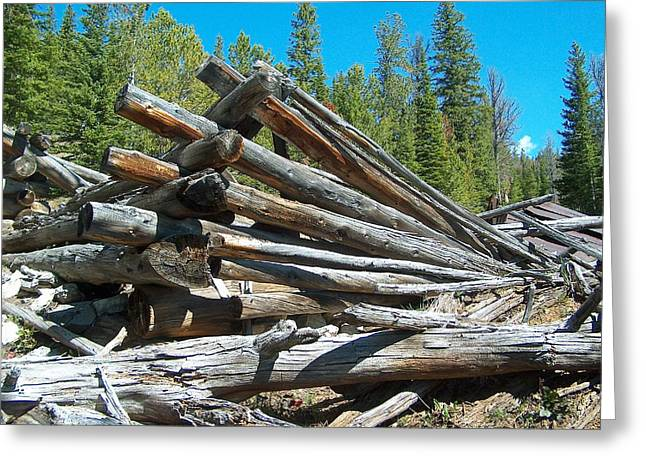 Land Reclamation Greeting Cards - Broken Cabin Greeting Card by Mark Eisenbeil