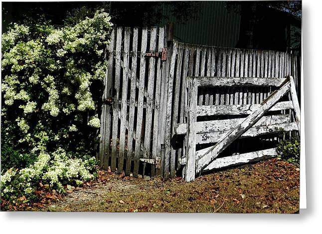 Gate Pastels Greeting Cards - Broken Gate Greeting Card by Sandra Sengstock-Miller