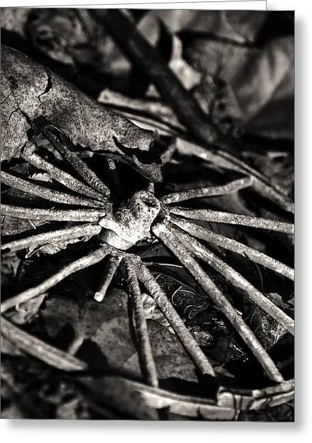 Spokes Greeting Cards - Broken Spoke II Greeting Card by Off The Beaten Path Photography - Andrew Alexander