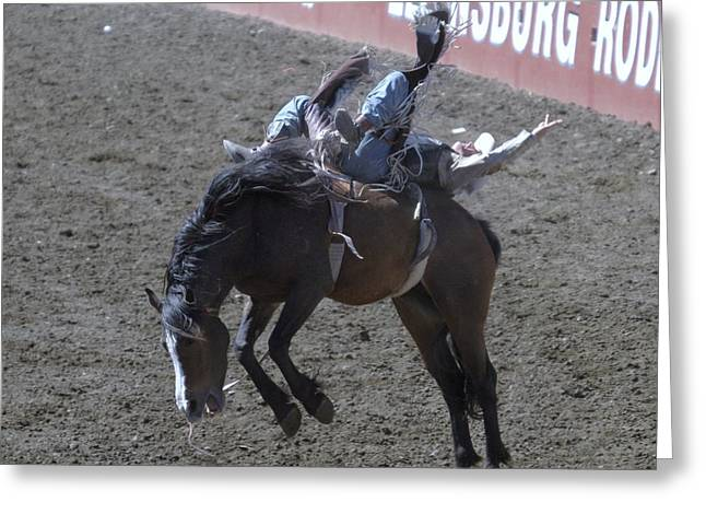 Bronc Greeting Cards - Bronc Rider Greeting Card by Jeff  Swan