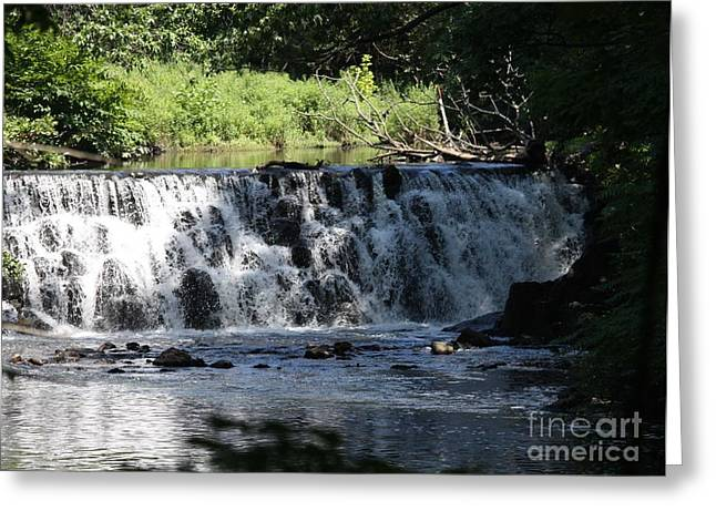 Reflections Of Trees In River Greeting Cards - Bronx River Waterfall Greeting Card by John Telfer