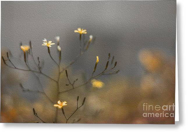 Stamen Digital Art Greeting Cards - Bronze Beauty Greeting Card by Clare Bambers
