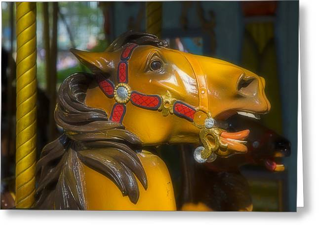 Amusements Greeting Cards - Bronze carrousel horse Greeting Card by Garry Gay