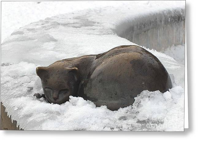 Cat Prints Photographs Greeting Cards - Bronze Cat In The Snow Greeting Card by Patrick J Murphy