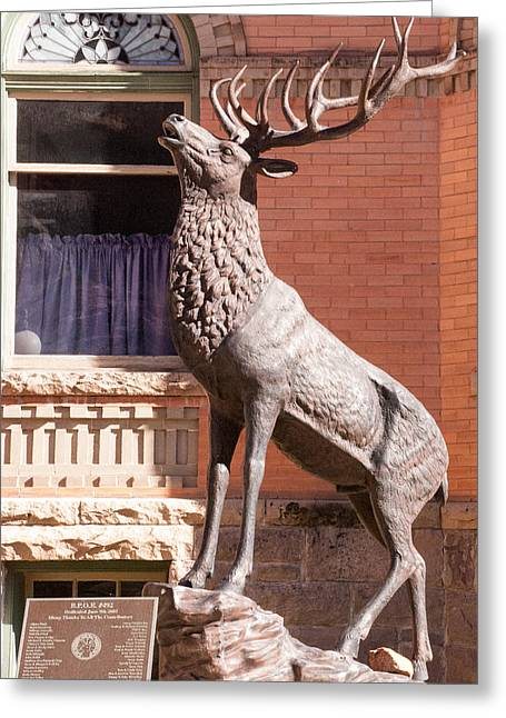 Geobob Greeting Cards - Bronze Statue of Elk Ouray Colorado Greeting Card by Robert Ford