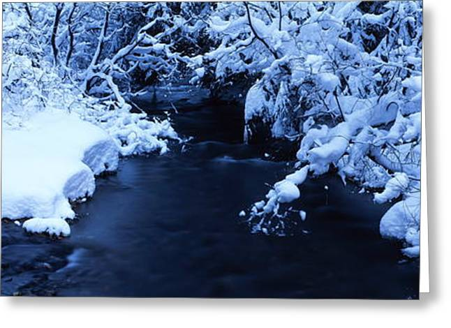 Beautiful Creek Greeting Cards - Brook in winter Greeting Card by Intensivelight