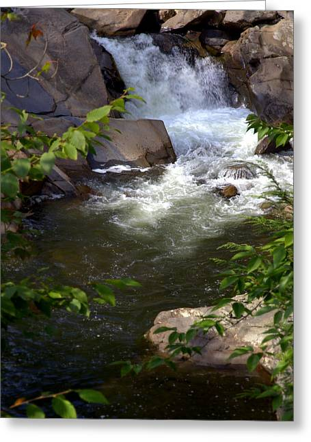 Sink Hole Greeting Cards - BROOK of TRANQUILITY Greeting Card by Karen Wiles