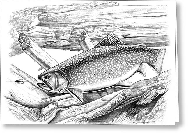 Jon Q Wright Brook Trout Fly Fishing Fly Fish Fishing Nymph Stream River Lake Greeting Cards - Brook Trout and Fly Greeting Card by Jon Q Wright