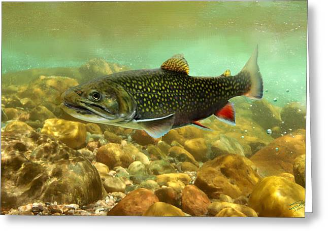 Stream Digital Greeting Cards - Brook Trout Greeting Card by Matthew Schwartz