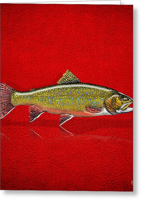 Speckled Trout Greeting Cards - Brook Trout on Red Leather Greeting Card by Serge Averbukh