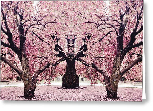 Prospects Greeting Cards - Brooklyn Bodhi Blossoms Greeting Card by Natasha Marco