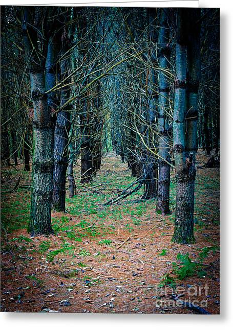 Brother Greeting Cards - Brothers Grimm Forest Greeting Card by Edward Fielding