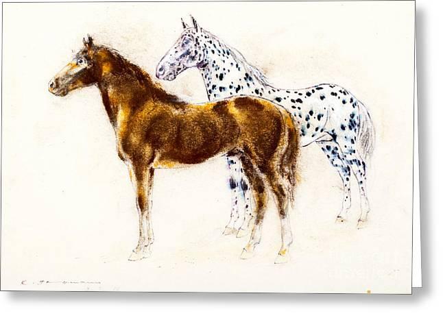 Pair Pastels Greeting Cards - Brown and appaloosa horse Greeting Card by Kurt Tessmann