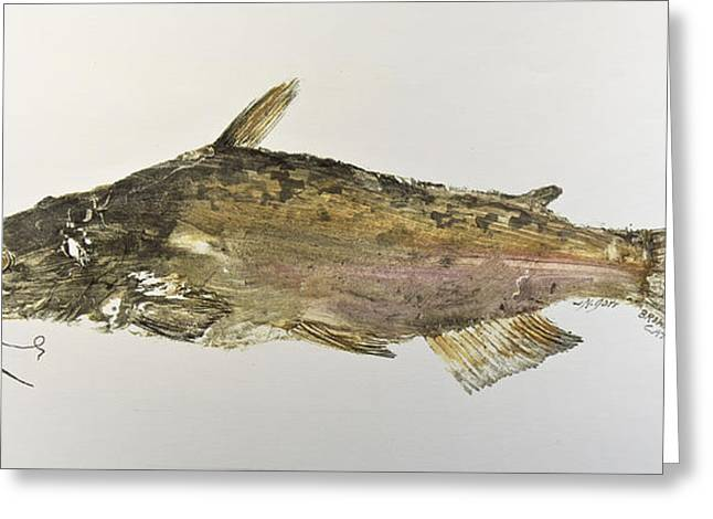Nancy Gorr Greeting Cards - Brown Bullhead Catfish Greeting Card by Nancy Gorr
