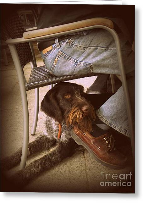 Searcy Greeting Cards - Brown Dog Greeting Card by Tanya  Searcy