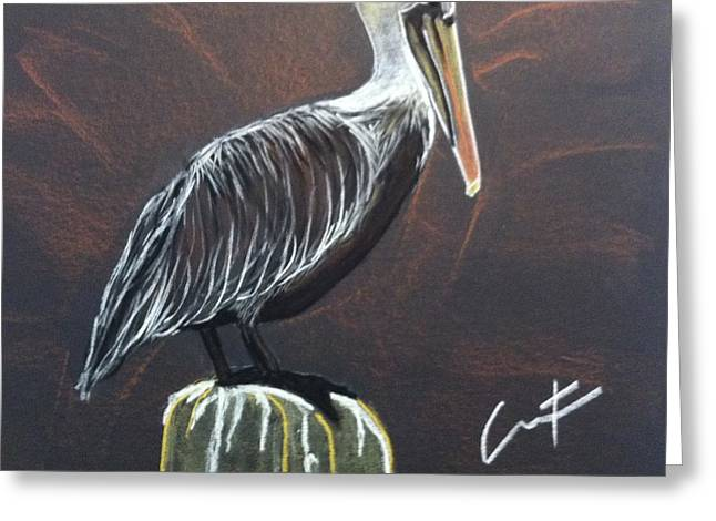 Sea Life Pastels Greeting Cards - Brown Pelican at Shrimp Dock Greeting Card by Cristel Mol-Dellepoort