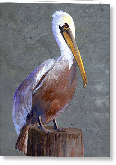 Brown Pelican Greeting Card by Elaine Hodges