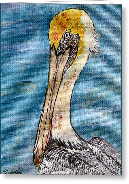 Wild Life Drawings Greeting Cards - Brown Pelican Greeting Card by Ella Kaye Dickey