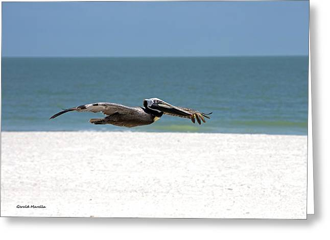 Pelicans Flying Over Water Greeting Cards - Brown Pelican Greeting Card by Gerald Marella