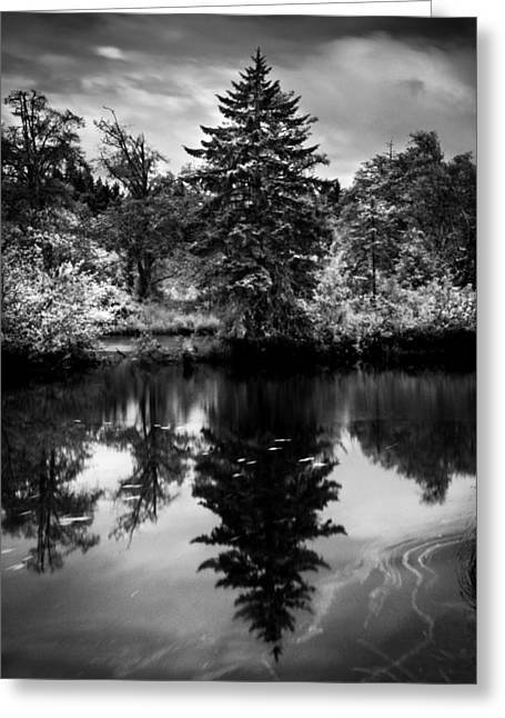 Haist Greeting Cards - Brownsmead Reflection Greeting Card by Paul Haist