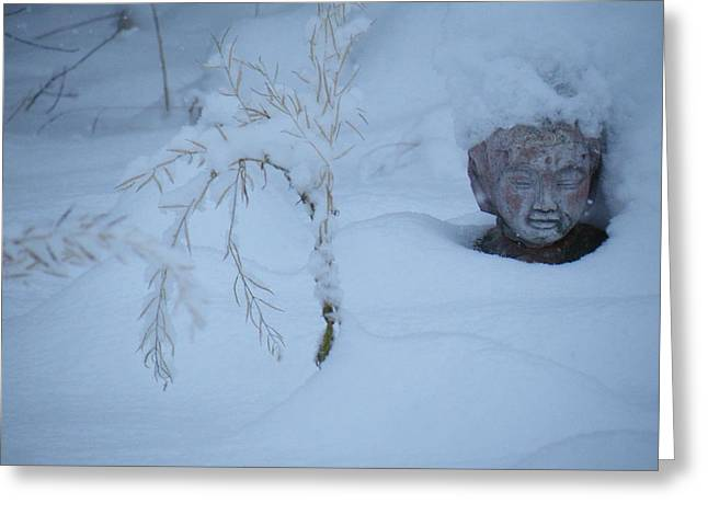 Garden Statuary Greeting Cards - Brrrr Budha Greeting Card by Brian Boyle