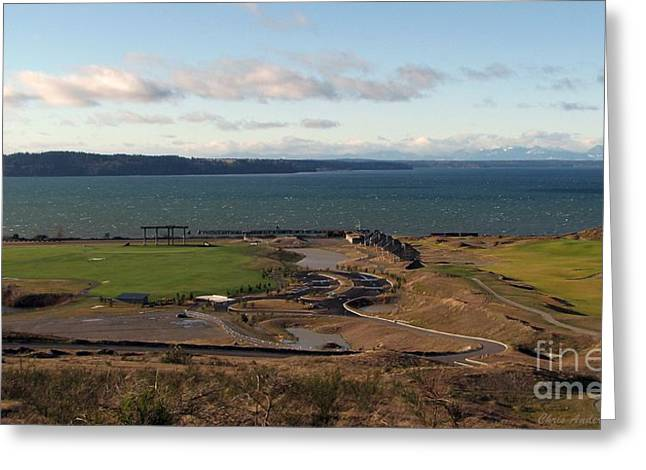 South Puget Sound Greeting Cards - Brrrrr Greeting Card by Chris Anderson