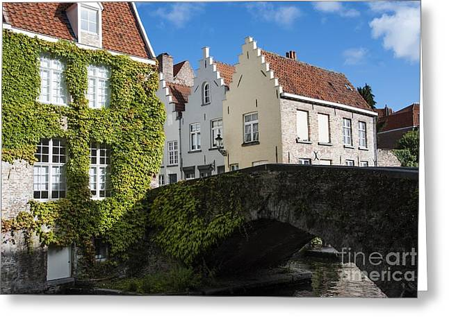 Bruges Greeting Cards - Bruges Gabled Homes Along Waterway Greeting Card by Juli Scalzi