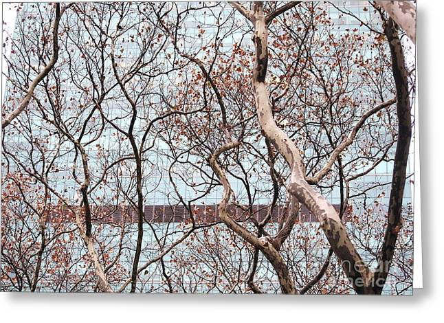 Bryant Greeting Cards - Bryant Park Trees Greeting Card by Jennifer Craft