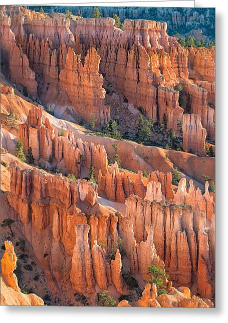 Bryce Amphitheater Greeting Card by Joseph Smith