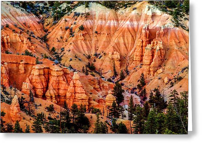 Garfield County Greeting Cards - Bryce Canyon Detail Greeting Card by TL  Mair