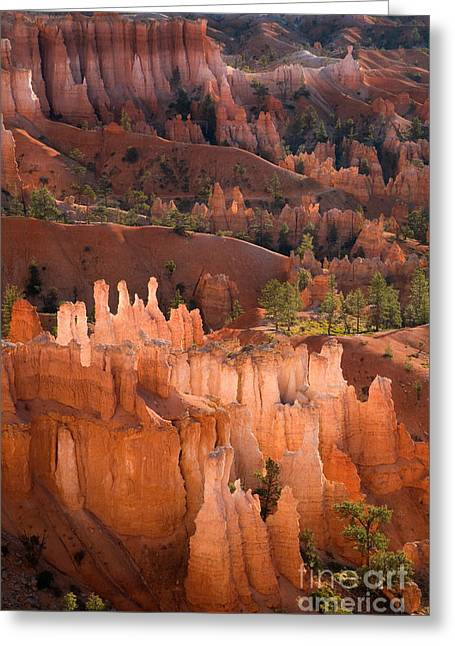 Southern Utah Greeting Cards - Bryce Canyon Hoodoos Greeting Card by Sean Bagshaw