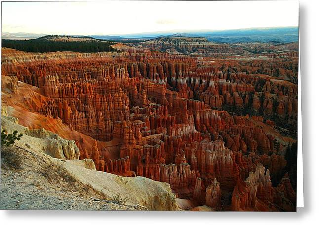 Southwestern Photography Greeting Cards - Bryce Canyon In The Afternoon Greeting Card by Jeff  Swan