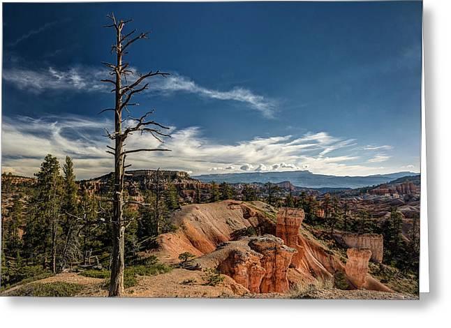 Jeff Burton Greeting Cards - Bryce Canyon IV Greeting Card by Jeff Burton