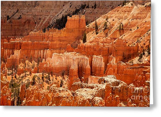 Hoodoos Greeting Cards - Bryce Canyon landscape Greeting Card by Jane Rix