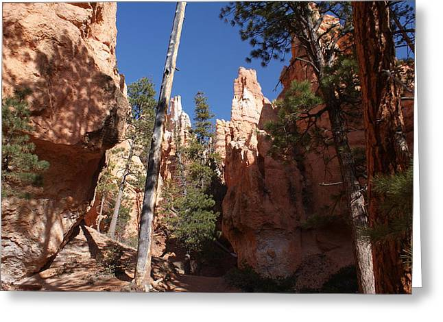Scenic Greeting Cards - Bryce Canyon Trail Greeting Card by Michael J Bauer