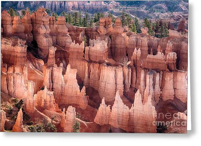 Bryce Canyon Utah Views 92 Greeting Card by James BO  Insogna