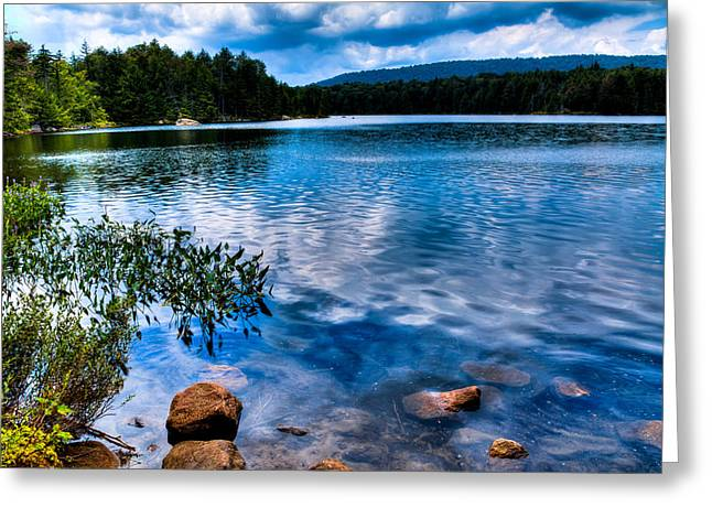 Lush Green Greeting Cards - Bubb Lake in the Adirondacks Greeting Card by David Patterson