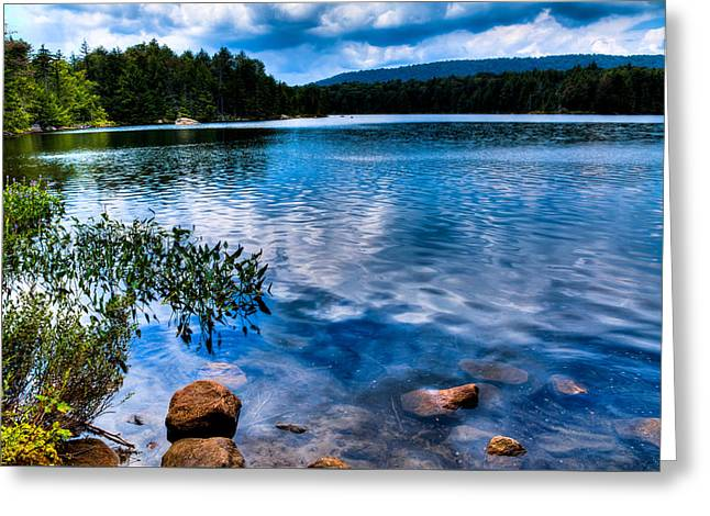 Tranquil Pond Greeting Cards - Bubb Lake in the Adirondacks Greeting Card by David Patterson