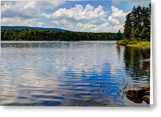 Lush Green Greeting Cards - Bubb Lake in the Summer Greeting Card by David Patterson